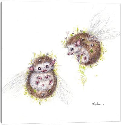 Thistlehogs Canvas Art Print