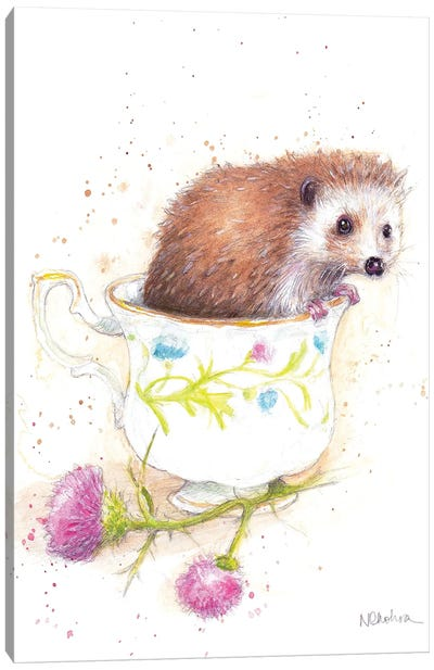 Hedgehog In A Teacup Canvas Art Print