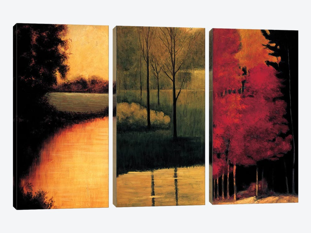 Point Of View I by Neil Thomas 3-piece Canvas Wall Art