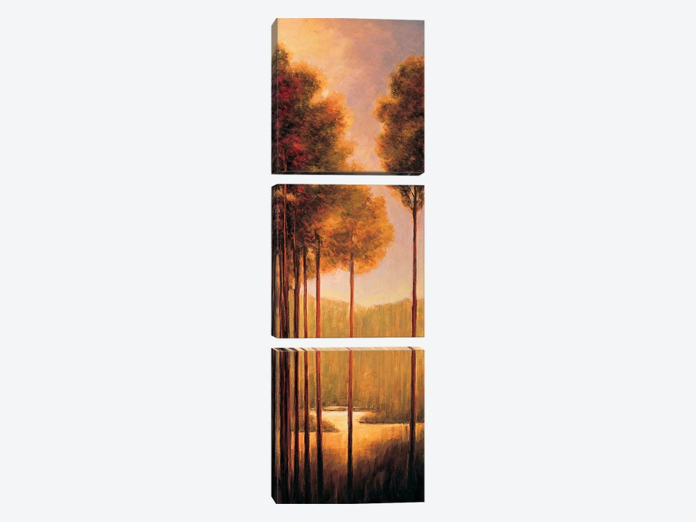 Through The Woods III by Neil Thomas 3-piece Canvas Artwork