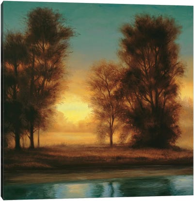 Twilight I Canvas Art Print