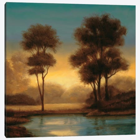 Twilight II Canvas Print #NTH19} by Neil Thomas Art Print