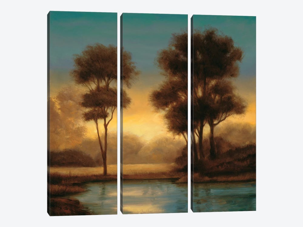 Twilight II by Neil Thomas 3-piece Canvas Wall Art