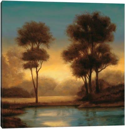 Twilight II Canvas Art Print