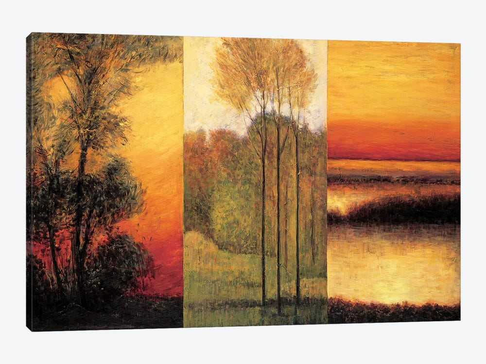 Vistas I by Neil Thomas 1-piece Canvas Art