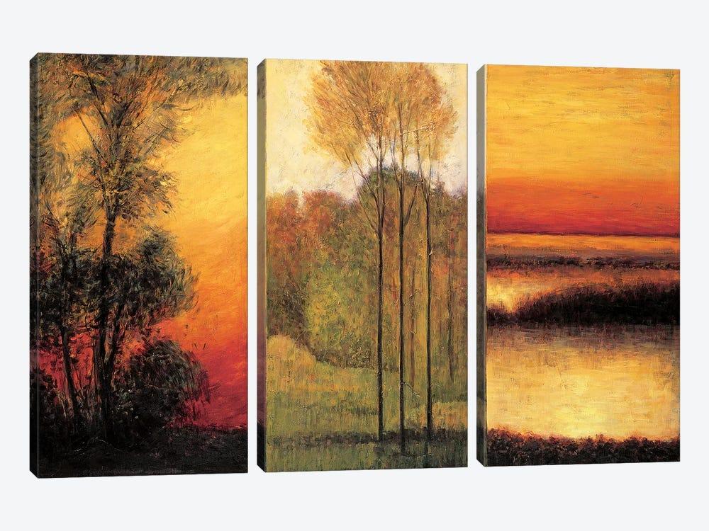 Vistas I by Neil Thomas 3-piece Canvas Artwork