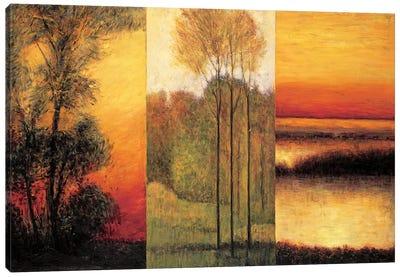 Vistas I Canvas Art Print
