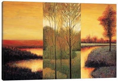 Vistas II Canvas Art Print