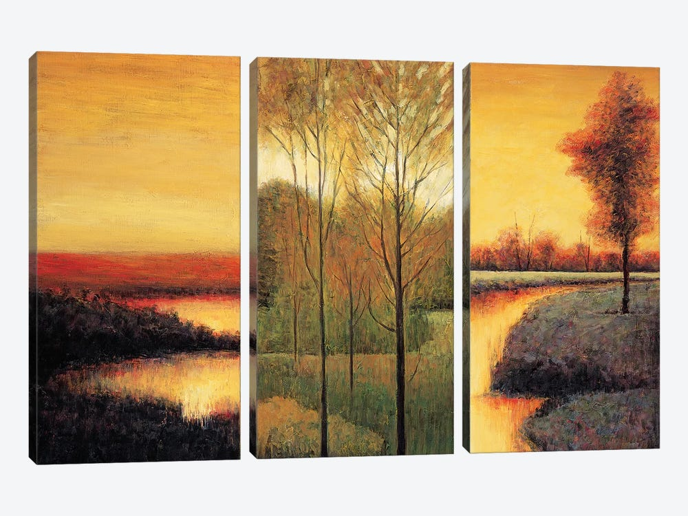 Vistas II by Neil Thomas 3-piece Canvas Art Print