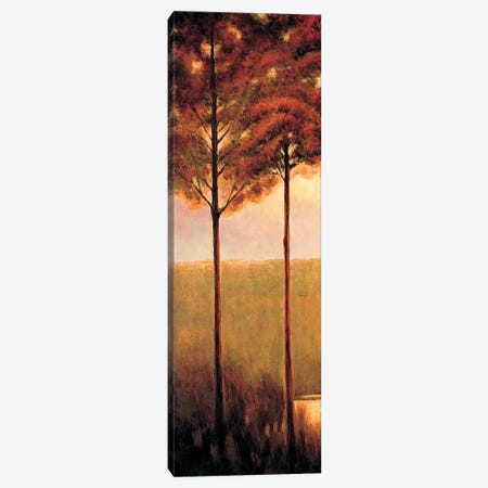 Through the Woods I Canvas Print #NTH24} by Neil Thomas Canvas Art Print
