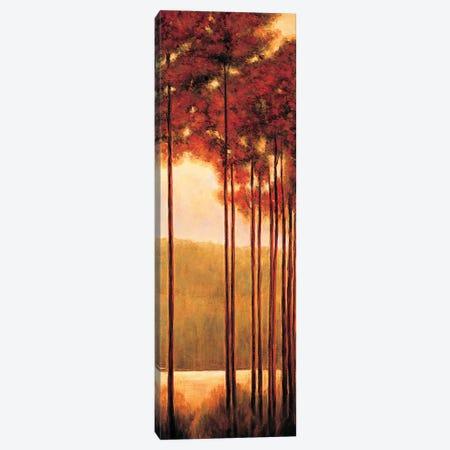 Through the Woods II Canvas Print #NTH25} by Neil Thomas Art Print