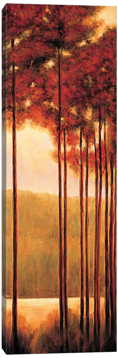 Through the Woods II Canvas Art Print