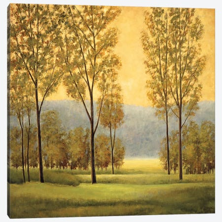 Misty Morning I 3-Piece Canvas #NTH26} by Neil Thomas Art Print