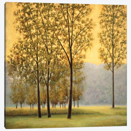 Misty Morning II 3-Piece Canvas #NTH27} by Neil Thomas Canvas Print