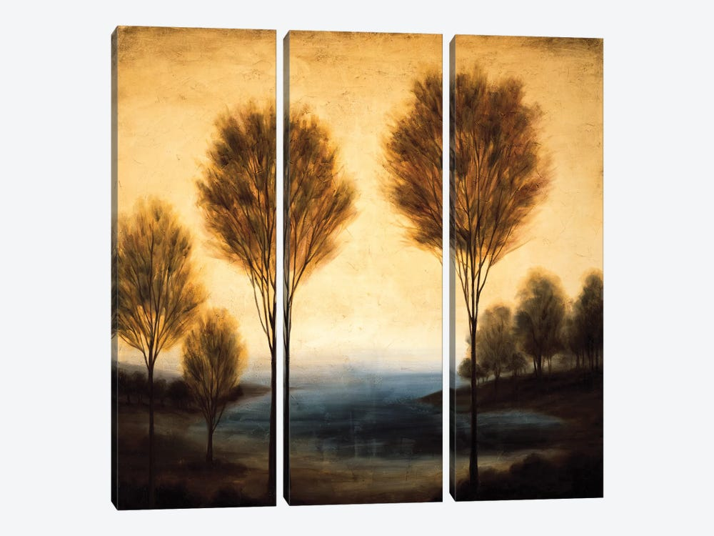 Above Us Only Sky II by Neil Thomas 3-piece Canvas Artwork