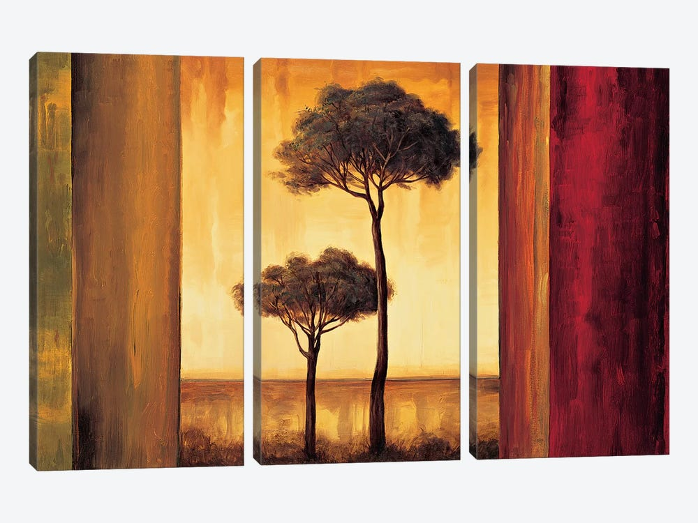 Entrancing I by Neil Thomas 3-piece Canvas Print