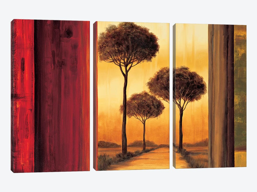 Entrancing II by Neil Thomas 3-piece Canvas Art