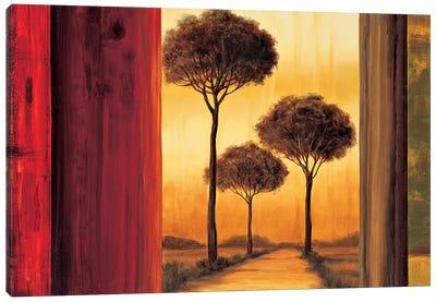 Entrancing II Canvas Art Print