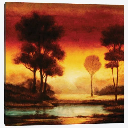 Evening Light I Canvas Print #NTH5} by Neil Thomas Canvas Art Print