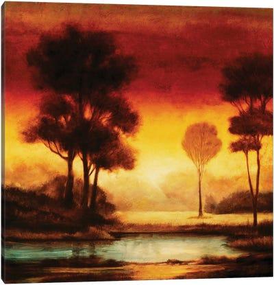 Evening Light I Canvas Art Print