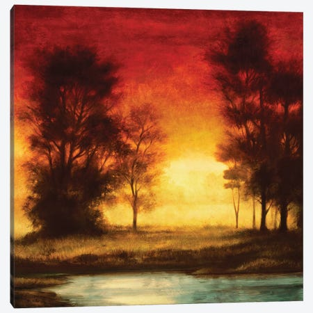Evening Light II Canvas Print #NTH6} by Neil Thomas Art Print