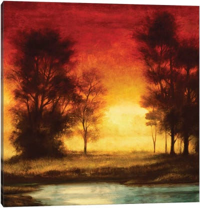 Evening Light II Canvas Art Print