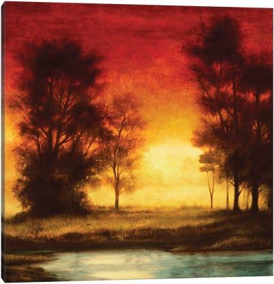 Evening Light II Canvas Art Print