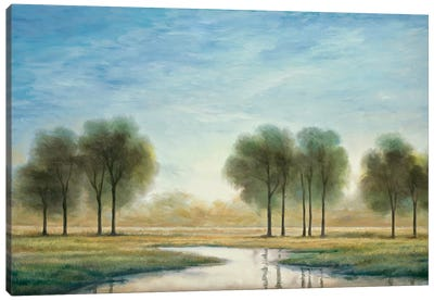 Morning Reflection I Canvas Art Print