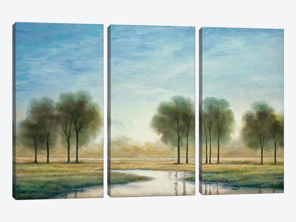 Morning Reflection I by Neil Thomas 3-piece Art Print
