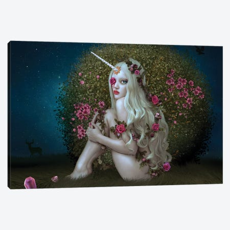 Lost Unicorn Canvas Print #NTL24} by Natalie Shau Canvas Print