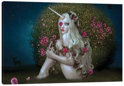 Lost Unicorn Canvas Art Print