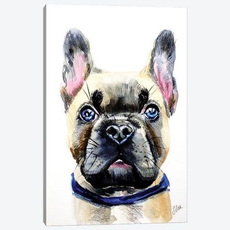 French Bulldog Canvas Print #NTM100} by Nataly Mak Canvas Print