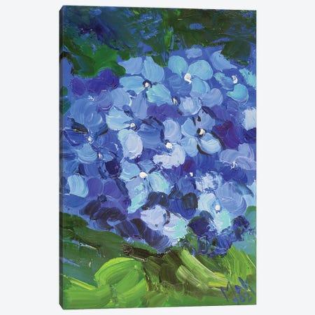 Blue Hydrangea II Canvas Print #NTM20} by Nataly Mak Art Print