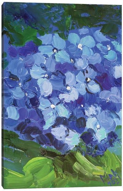 Blue Hydrangea II Canvas Art Print