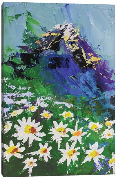 Landscape With Сamomiles Canvas Art Print