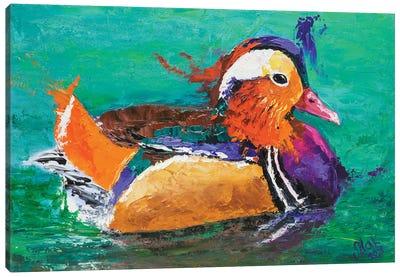 Mandarin Duck II Canvas Art Print
