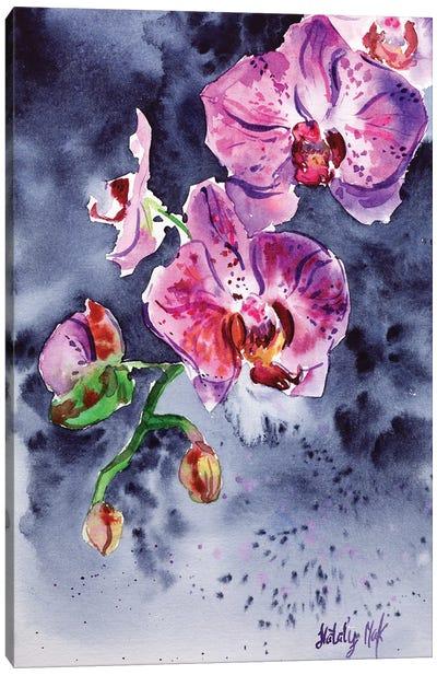 Orchid Flower Canvas Art Print