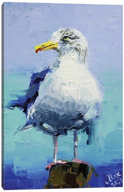 Seagull Canvas Art Print