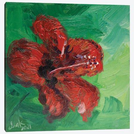 Red Hibiscus Canvas Print #NTM80} by Nataly Mak Canvas Print