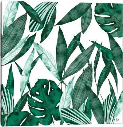 Evergreen II Canvas Art Print