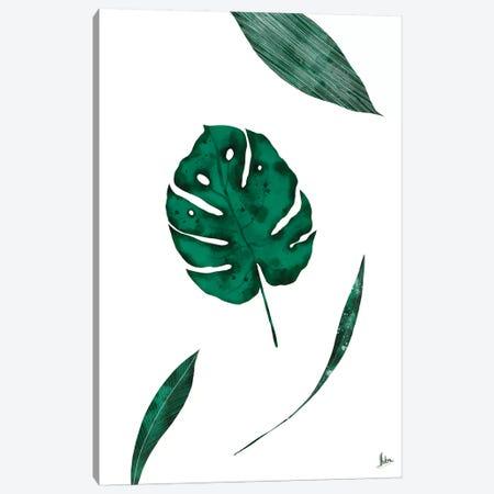 Monsterra Canvas Print #NTX49} by Natxa Canvas Art