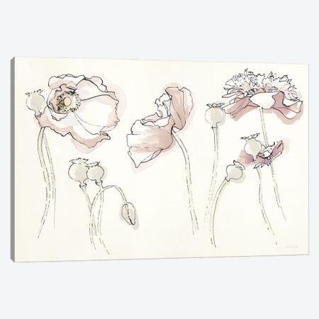 Somniferums Neutral Crop Canvas Print #NVA7} by Shirley Novak Canvas Wall Art