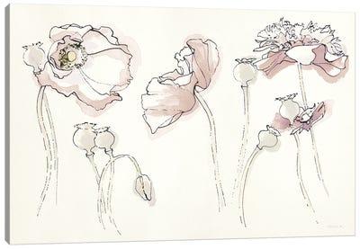 Somniferums Neutral Crop Canvas Art Print