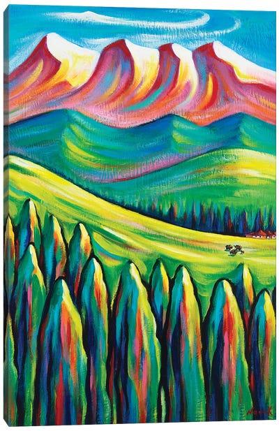 Somewhere Far Canvas Art Print