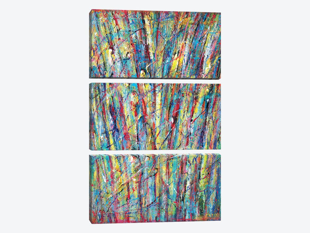 Fountain Of Colors by Novik 3-piece Canvas Art Print