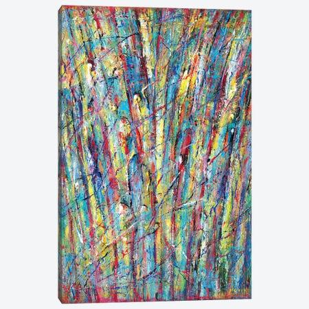 Fountain Of Colors Canvas Print #NVK54} by Novik Canvas Artwork