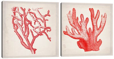 Red Coral Diptych Canvas Art Print