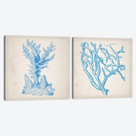 Blue Coral Diptych Canvas Print Set #NWE2HSET004} by Natasha Westcoat Canvas Wall Art