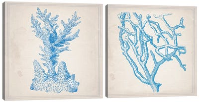 Blue Coral Diptych Canvas Art Print