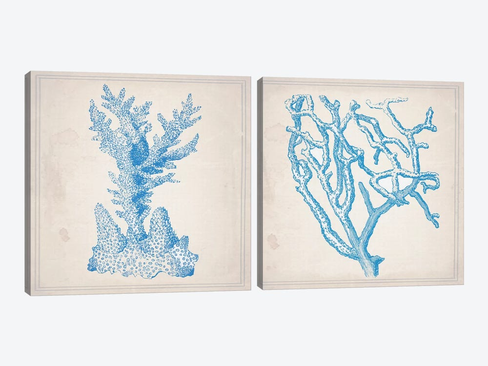 Blue Coral Diptych by Natasha Wescoat 2-piece Canvas Art Print